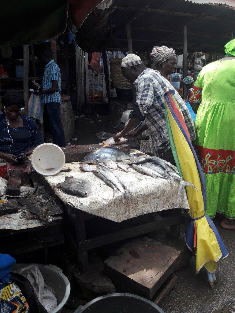Gekochte vis wordt direct schoongemaakt