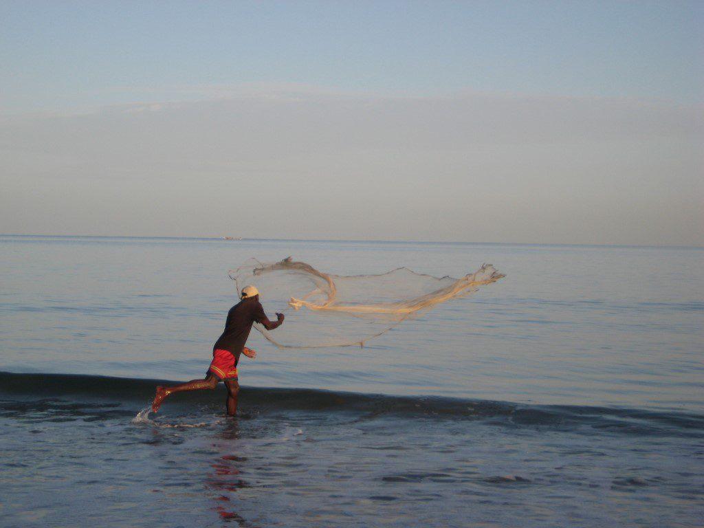 Kust visser