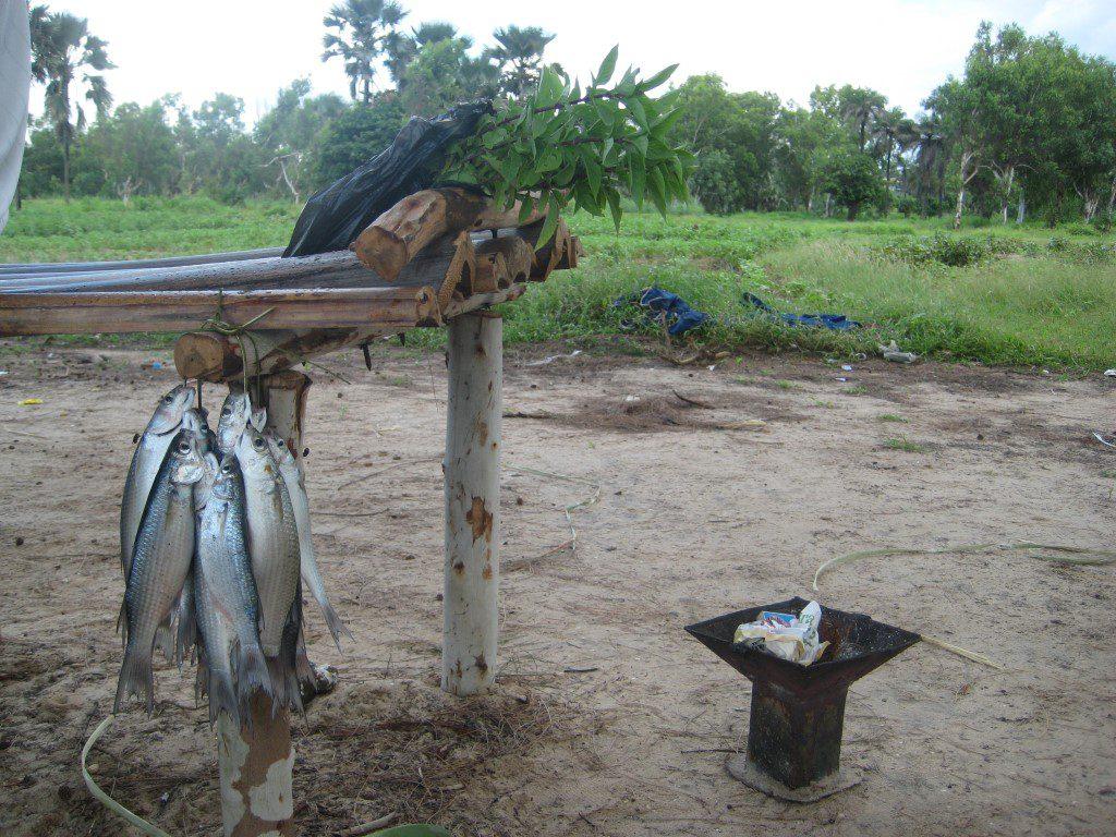 Vers gevangen vis